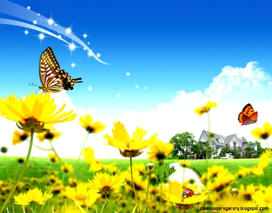 Spring flowers Butterfly wallpaper and Butterflies on Pinterest