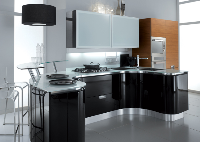 Kitchen decor idea black kitchen cabinets design for Black kitchen cabinets photos
