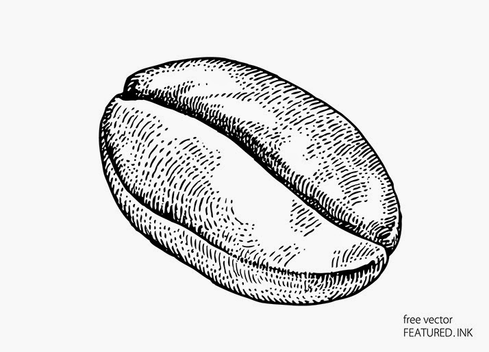 Coffee bean vector black and white images for How to draw a coffee bean