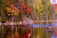 Mine ponds in the fall