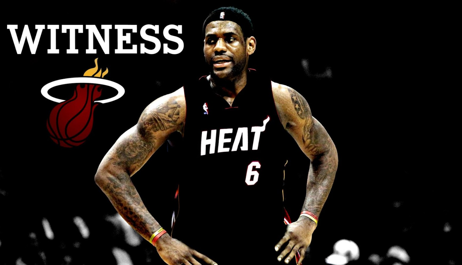 LeBron James Miami Heat