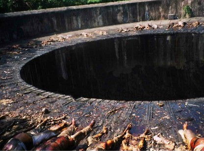 dakhma pit of blood