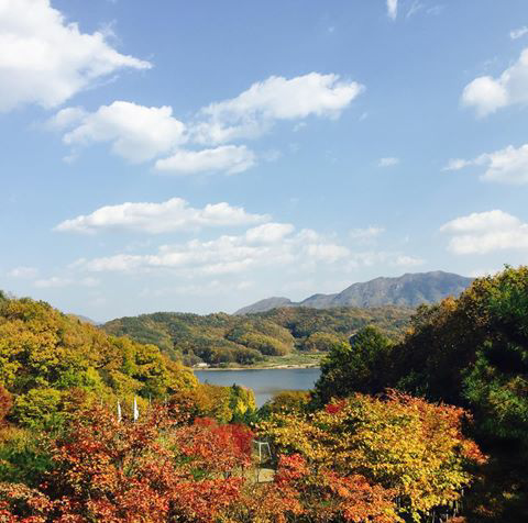 Beautiful Fall in Korea
