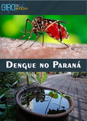 PARANÁ JÁ SOFRE COM EPIDEMIA DE DENGUE