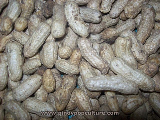 mani, peanut, peanuts