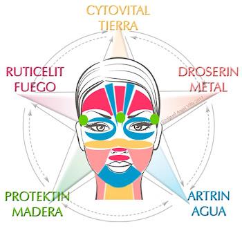 Zonas reflejas de los meridianos en el rostro y las cremas correspondientes