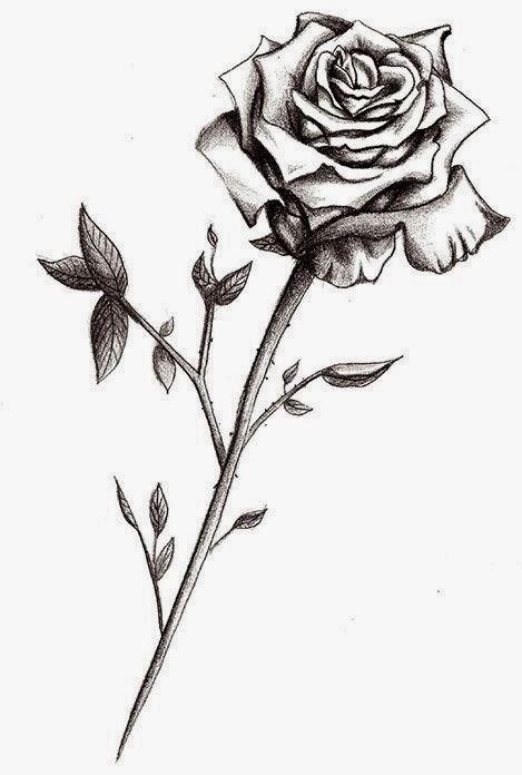 Rose tattoo stencil