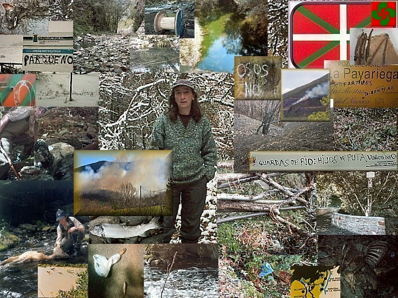 Ecologista Vasca en Asturias