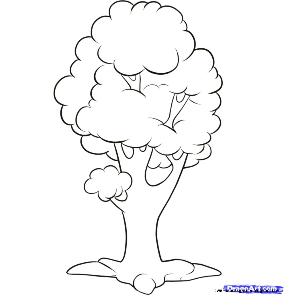 How to Draw an Easy Tree Step by Step Trees Pop Culture FREE