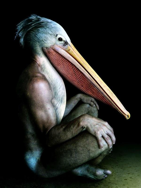 09-Francesco-Sambo-Man-Animal-Hybrids-Mashup-Photography-www-designstack-co