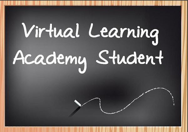 Virtual Learning Academy Student