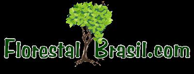 Florestal Brasil
