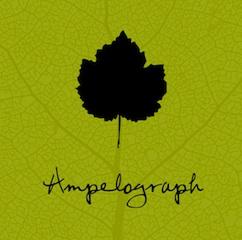 Ampelograph