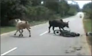 Kemalangan