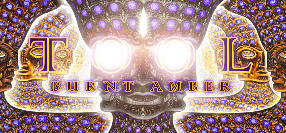 TOOL by Burnt Amber