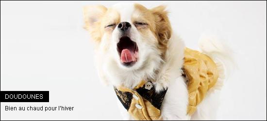 les jolies doudounes pour chiens pour passer l 39 hiver bien au chaud woof mag 39 le blog des. Black Bedroom Furniture Sets. Home Design Ideas