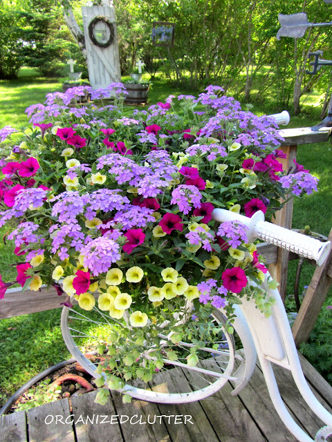 Garden Bike Basket of Annuals