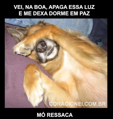 http://3.bp.blogspot.com/--9pkToirdY4/T3c0DK19zcI/AAAAAAAABoc/nZ_qeSza2lk/s1600/cachorro+ressaca+coracionei.jpg