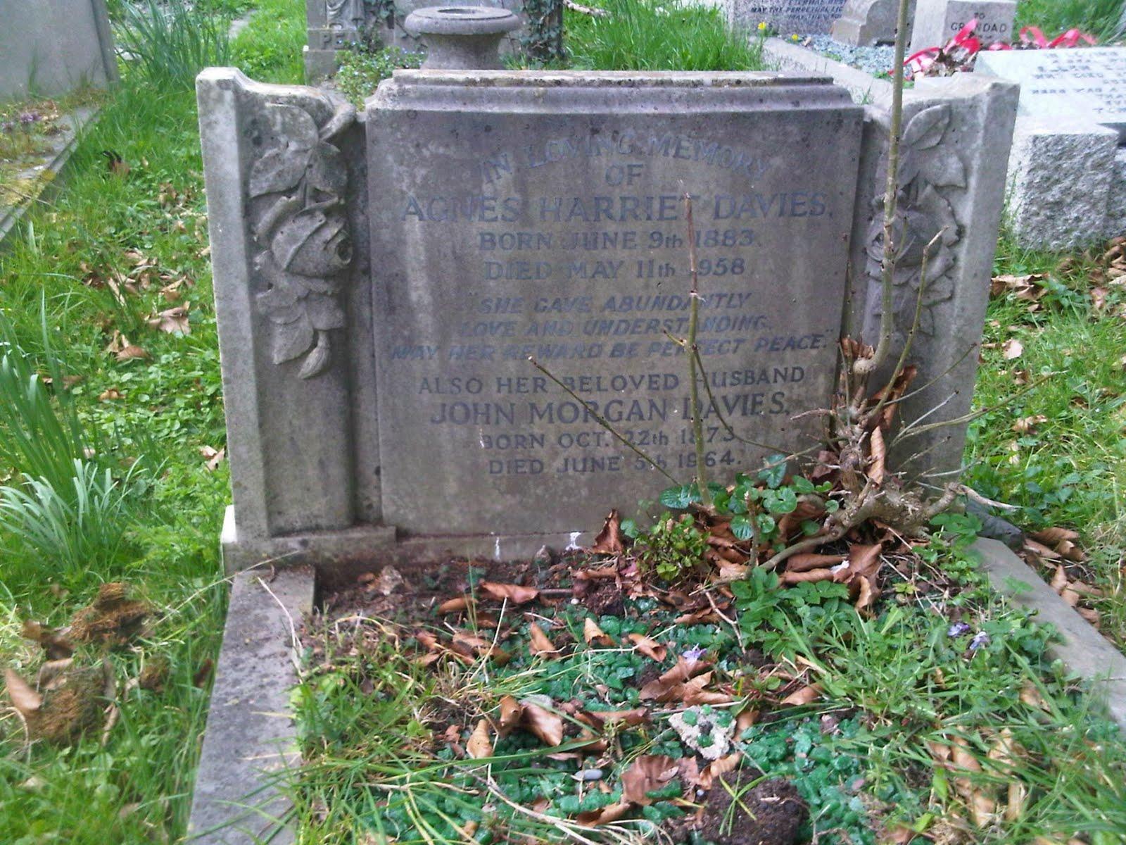 http://3.bp.blogspot.com/--ALxYUAIH0w/TapTuPaFsnI/AAAAAAAAGhg/RdgOZcZS12g/s1600/Agnes+Harriet+nee+Robertson+Davies+Grave+1.jpg