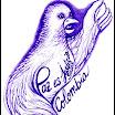 Manifiesto 'Por la Paz hasta la última gota de nuestros sueños'