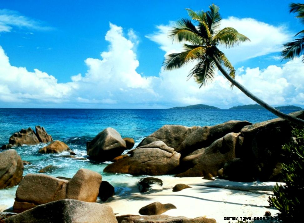 Beautiful Nature Beach   wallpaper