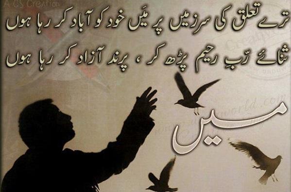 Tere Talluq Ki Sar Zameen - Urdu Poetry Of Amjad Islam Amjad