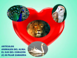 WEB ANIMALES DEL ALMA: EL OJO DEL CORAZÓN