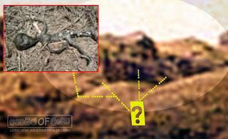 Gossip Lanka, Hiru Gossip, Lanka C News - Body of dead alien found on Planet Mars