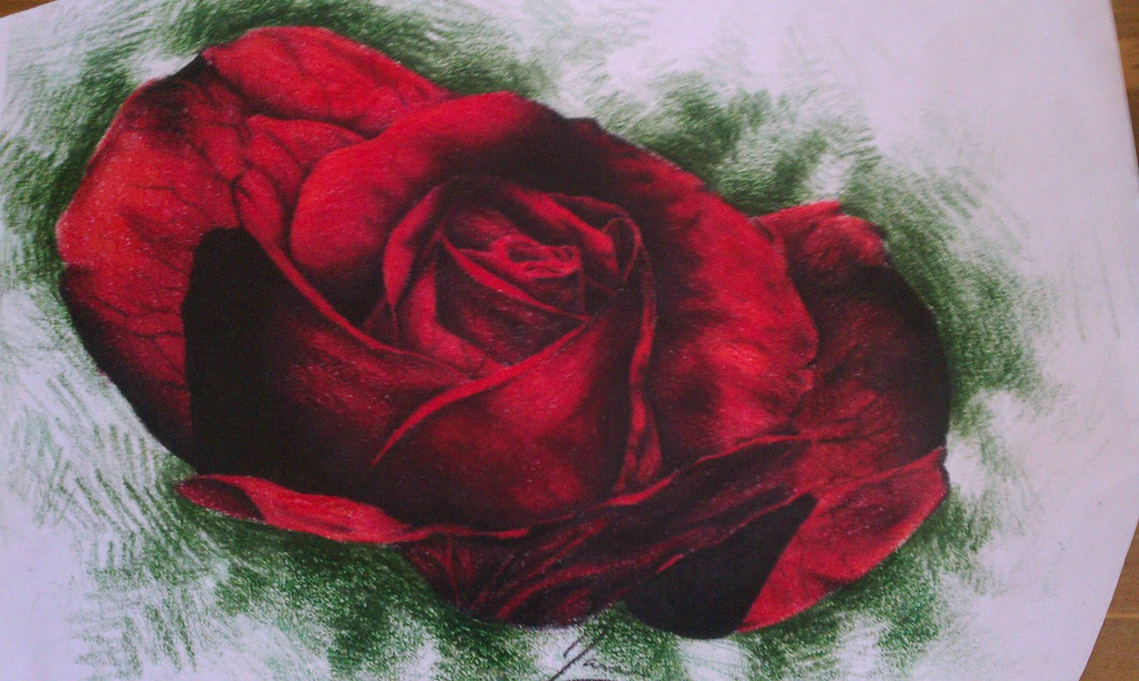 The Hodge-Podge Gallery: Flower Drawings