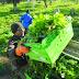 Ο αγροτουρισμός άγνωστος στη Μεσσηνία