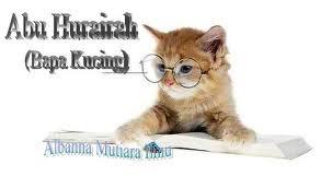 �ت�ج� تص��ر� برا� �cat+abu hurairah��
