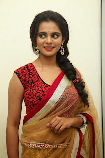 Actress Manasa Picture Gallery in Saree at Rowdy Fellow Movie Audio Launch  008.jpg