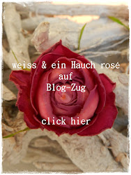 Blog-Zug