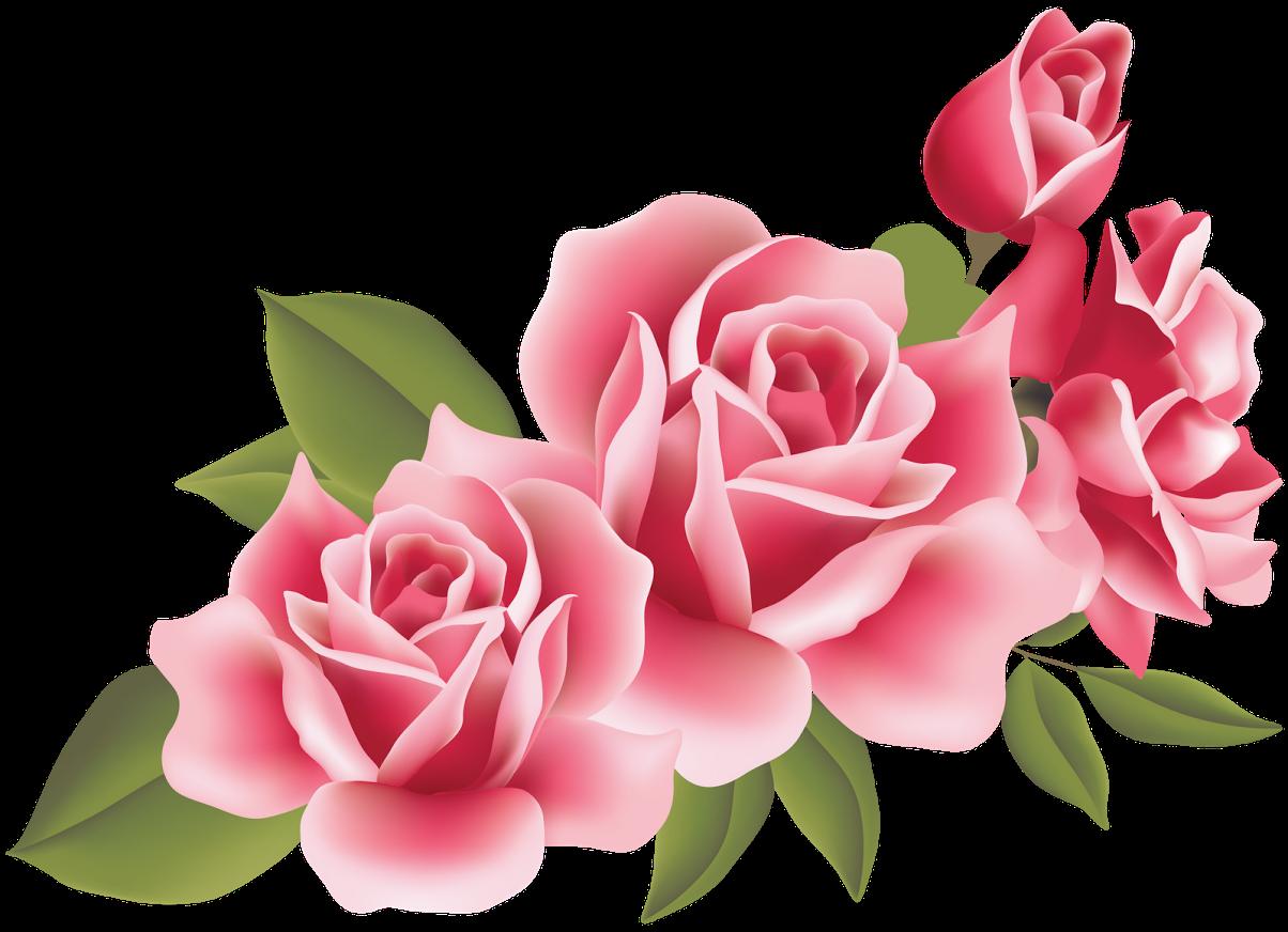 Decora con flores laminas de rosas - Laminas para decorar ...