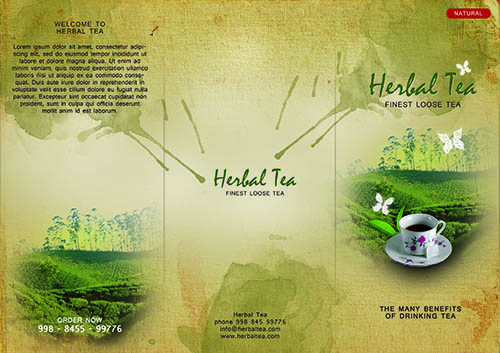 How To Design a Tri Fold Brochure Cover In Photoshop
