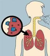 Obat TBC Tradisional
