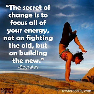 The secret of change is to focus all your energy not on fighting the old, but on building the new
