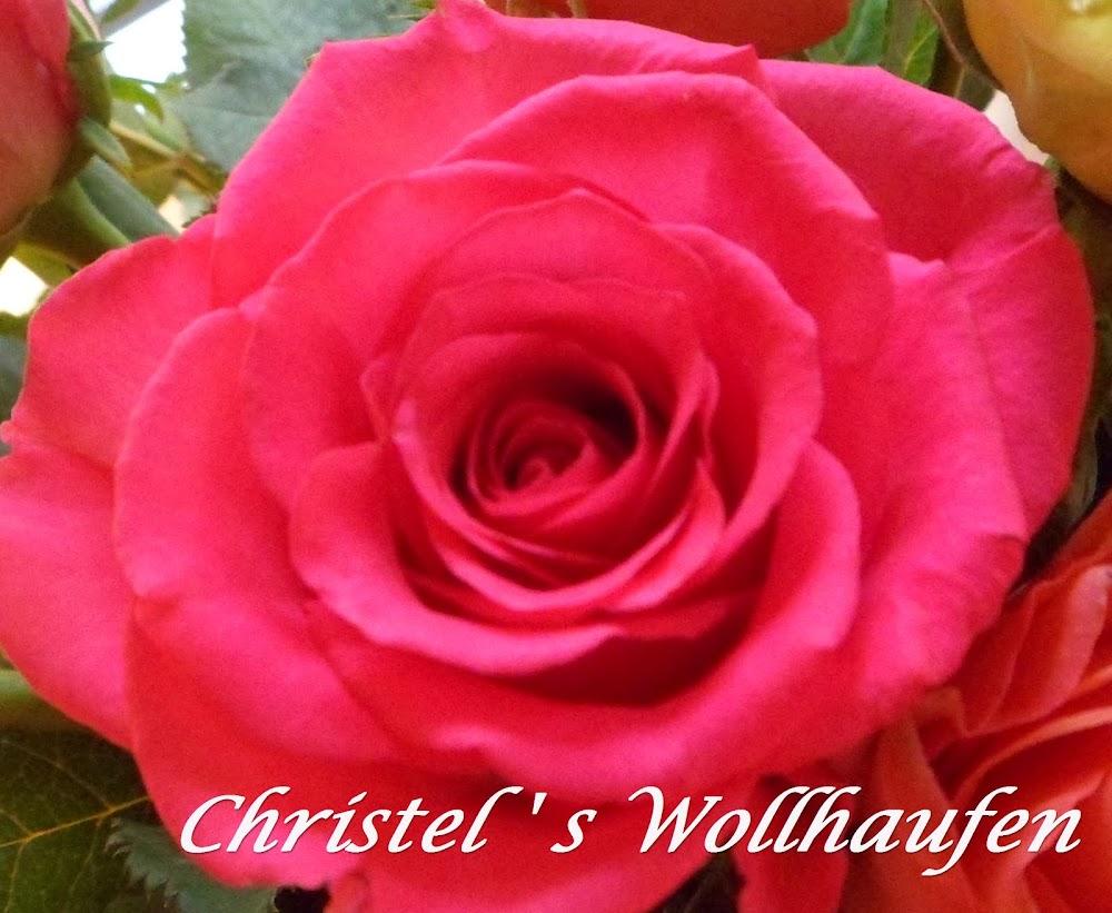 Christel's Wollhaufen