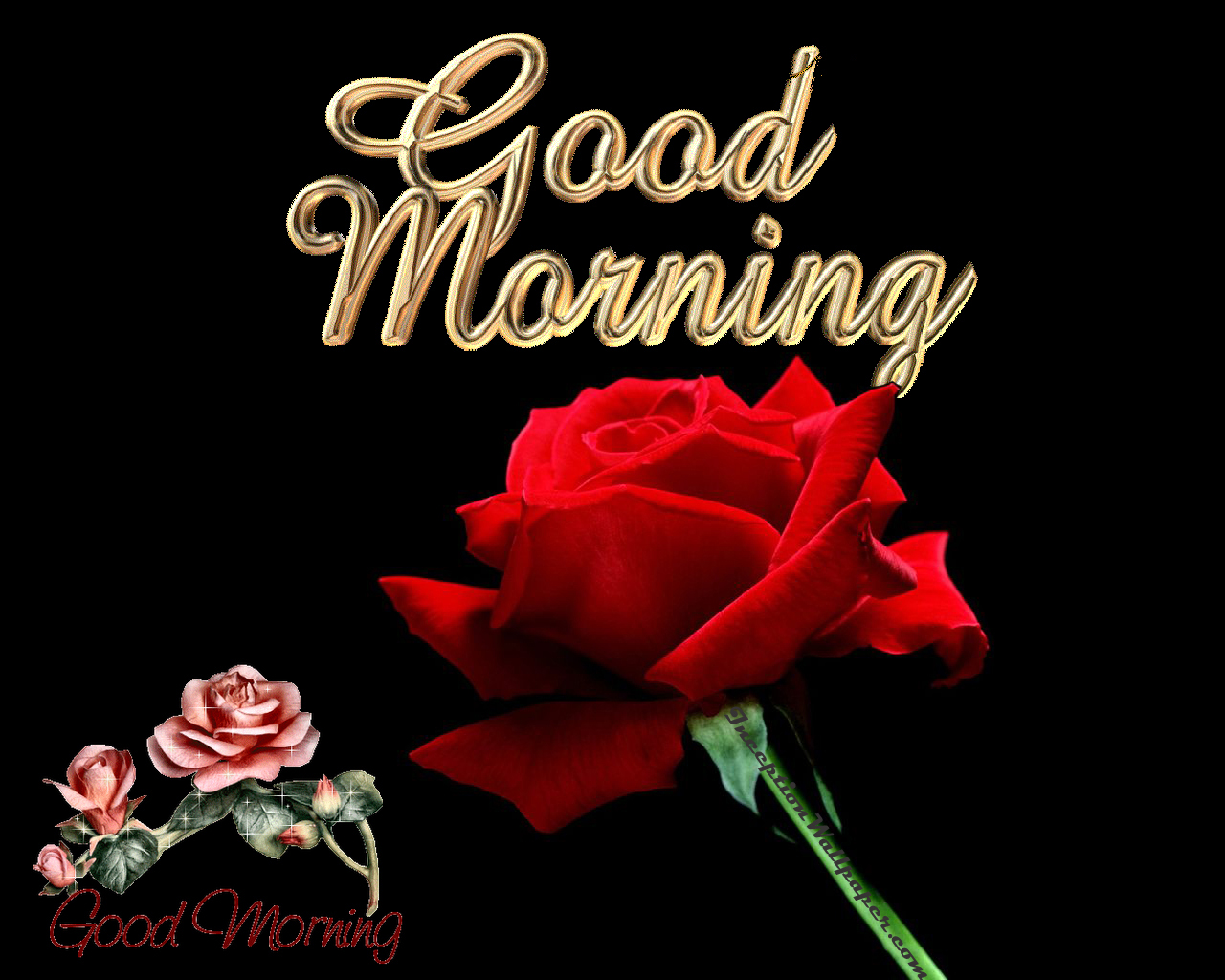 Good Morning Wallpaper Free Download Wallpaper ...