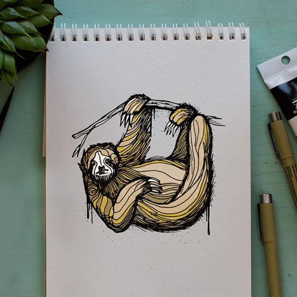 kyson dana alphabet animal illustrations-13