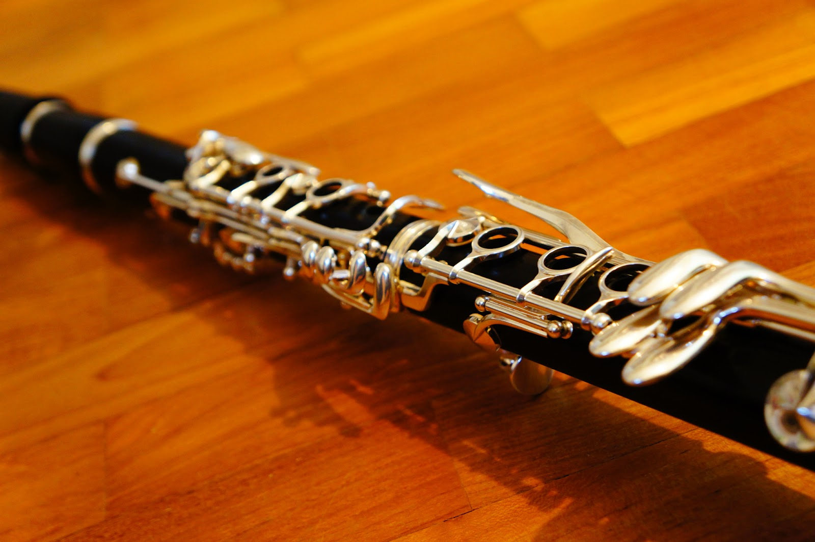 Of Kids And Education The Clarinet Cadenza