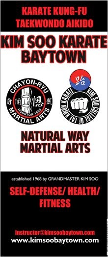 Kim Soo Karate of Baytown