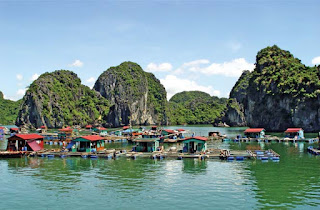 Lan Ha Bay Insight tour : 2  days 1 night