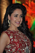 Pragya Jaiswal at Kanchem audio launch-thumbnail-6