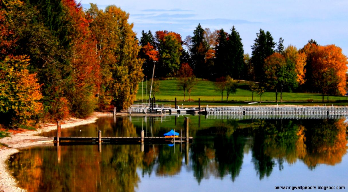 Wallpapers Germany Parks Lake Autumn Rieden am Forggensee Trees