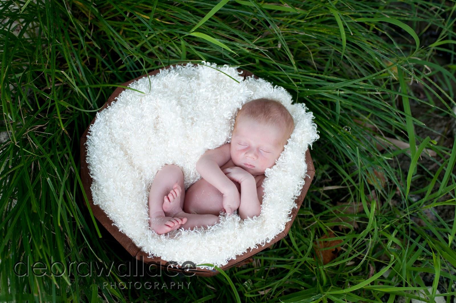 Professional Newborn And Family Portraits In Rochester Ny Debra