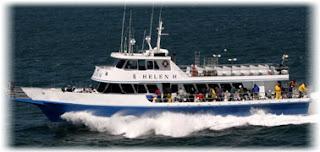 Birding is fun extreme pelagic birding no pain no gain for Helen h deep sea fishing