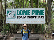 Brisbane Koala Sanctuary