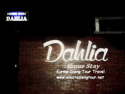 plang nama homestay dahlia Dieng