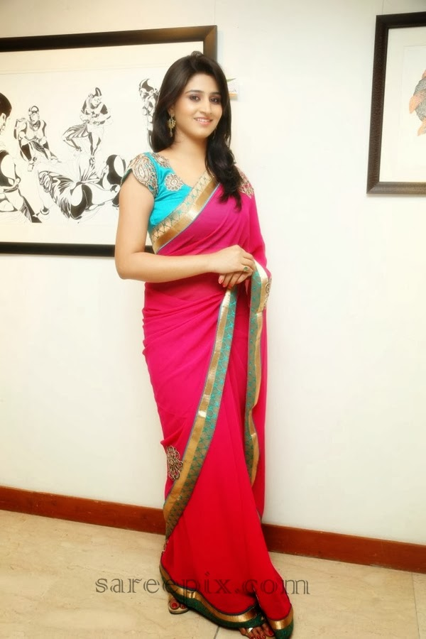 Shamili agarwal saree at Muse art gallery